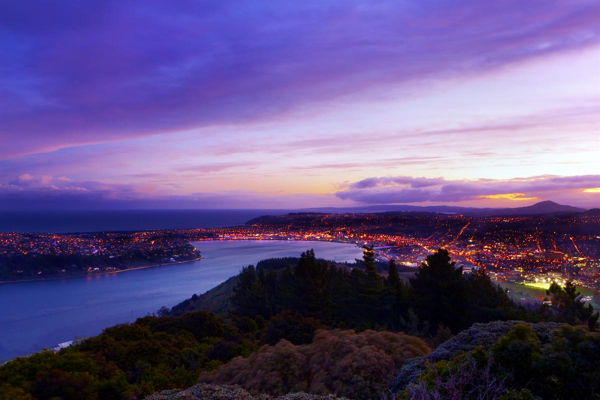 Dunedin and Harbour at dusk